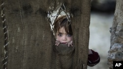 A Pakistani child, who was displaced with her family from Pakistan's tribal areas, looks out through a hole of a makeshift curtain at the entrance of her family's home, in a poor neighborhood on the outskirts of Islamabad, Pakistan, Monday, Jan. 28, 2013.