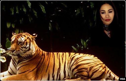 the lady or the tiger 5 paragraph Learn english through story | the lady or the tiger audiobook - duration: 12:37 kid songs 1986 6,036 views 12:37 mrs mancina's example literary analysis essay - duration: 5:01.
