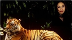 Quiz - The Lady, or the Tiger?