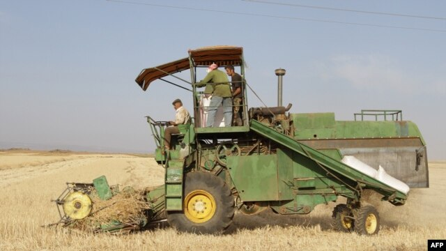 FILE - Syrian farmers collect crops in a field in Daraa, 100 kms south of Damascus, on June 5, 2010.