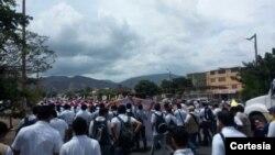 Cientos de personas marchan en frontera colombo-venezolana para protestar lo que esta sucediendo entre Venezuela y Colombia. [Foto cortesía de Erika Ayala, InsideOut Cúcuta].