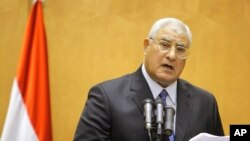 埃及宪法法院院长阿德勒•曼苏尔宣誓就任临时总统