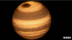 Astronomers believe the dwarf star W1906+40 has a giant storm similar to the one on Jupiter. It is depicted in this illustration from NASA.