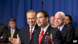 Senator Marco Rubio of Florida talks about immigration.