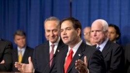 Senator Marco Rubio of Florida talks about immigration.
