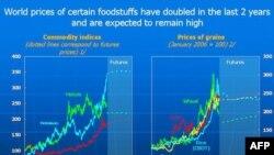 OKB paralajmëron për rritjen alarmante të çmimeve të ushqimit