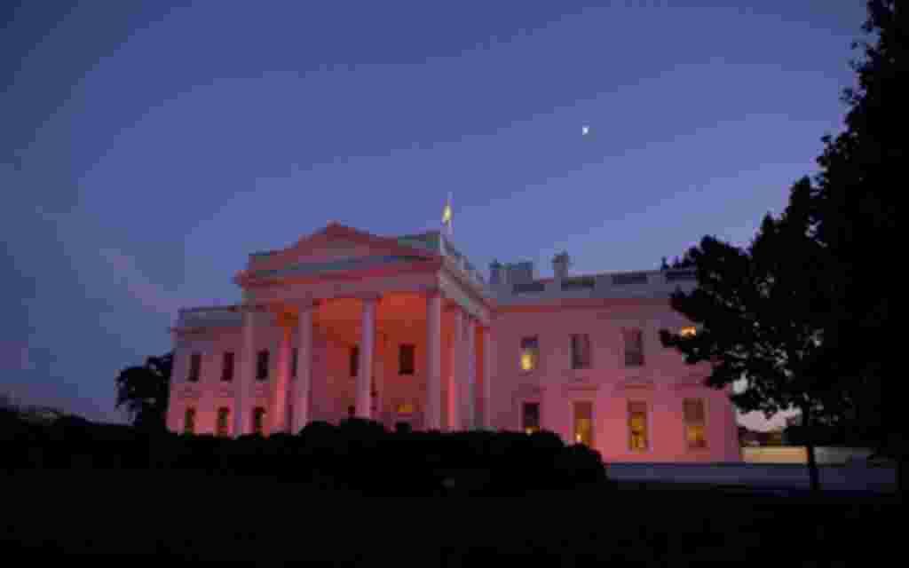 La Casa Blanca mostrando su apoyo a la iniciativa durante el mes de octubre de 2010.