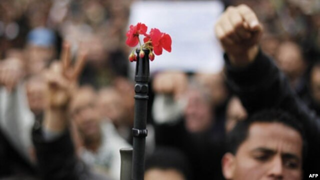 Tunisia đã thành công trong cuộc Cách mạng Hoa Nhài, lật đổ chế độ độc đảng cảnh sát trị