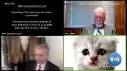 Au Texas, un avocat comparait par visioconférence avec un filtre de chat