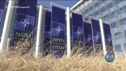 Експерти у Вашингтоні: Україна може рухатися до НАТО і без формального встановлення ПДЧ. Відео