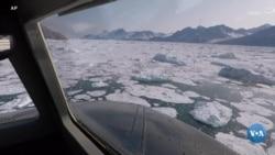 Grenlandiya muzliklari tezlikda erimoqda