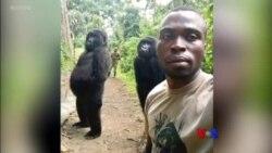 Selfie ႐ိုက္တဲ့ လူ၀ံ၊ ဟိမ၀ႏၲာေပၚက ႏွင္းလူ