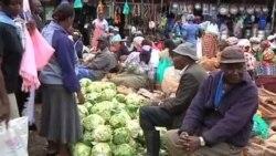 联合国发起节约粮食活动