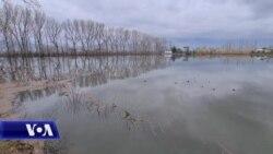 Dajç, banorët të shqetësuar për dëmet e shkatuara nga përmbytjet