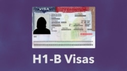 H1-B Visas Let US Firms Hire Foreigners for Specialized Jobs
