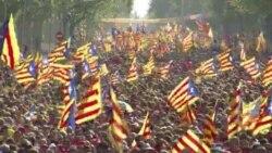 SPAIN CATALAN DEMO VOSOT