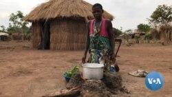Fugir para não ser cúmplice de rebeldes - o drama no centro de Moçambique