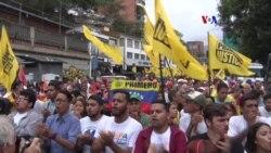Venezuela: oposición marchó hasta la OEA