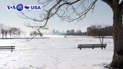 Manchetes Americanas 31 janeiro: Temperaturas nos EUA estão abaixo dos 0º celsius