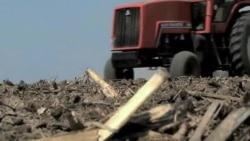 Amerikada qurg'oqchilik/Drought in US
