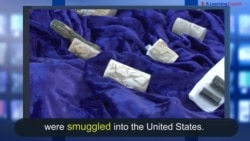 News Words: Smuggle