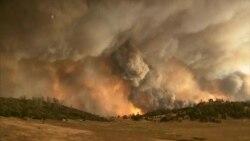 Un muerto y miles de evacuados por incendios en California