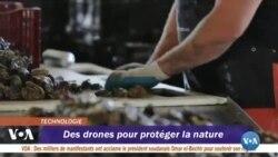 Des drones pour étudier l'impact de certaines pratiques piscicoles