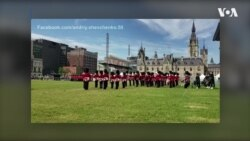 Український День Канади: Зміна варти під «Наливаймо браття…». Відео