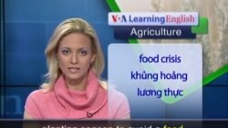 Anh ngữ đặc biệt: Agricultural Crisis Hits Central African Republic (VOA-Ag Rep)