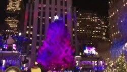 50 тысяч рождественских огней