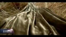 Sheryl Crow: Novo izdanje pjesme Redemption inspirisano posjetom Bosni i Hercegovini