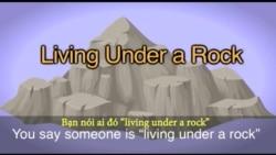 Thành ngữ tiếng Anh thông dụng: Living under a rock (VOA)