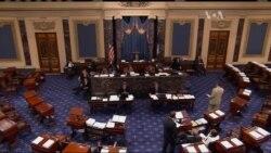 Сенатори закликають уряд США змінити політику щодо України. Відео