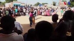 Yalis americanos em Nsanje, Malawi