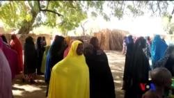 Les étudiantes de Dapchi libérées par Boko Haram (vidéo)