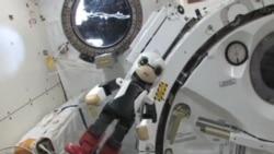 Japan Space