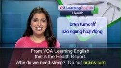 Anh ngữ đặc biệt: Sleep Brain (VOA)