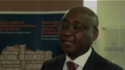 Report: Africa's Economic Prosperity at Risk From Instability