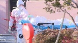 Health Air Travel Virus