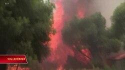 Hy Lạp để tang nạn nhân cháy rừng