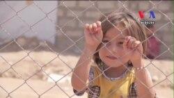UN, Camp Leaders in Iraq Prepare for New Wave of War Victims