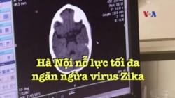 Hà Nội nỗ lực tối đa ngăn ngừa virus Zika