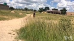 Soldiers Causing Anxious Moments in Rural Zimbabwe