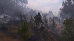 Chile Fire