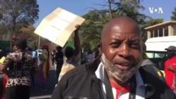 Sachigaro weMDC Alliance muSouth Africa, Trust Ndlovu, Vachitaura Zvaitika