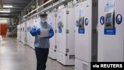 資料照:輝瑞公司在比利時的一名工作人員走過一排存儲疫苗的冰櫃。