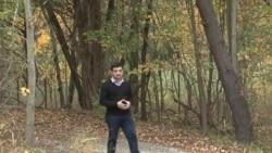 Amerikana: Qeyri-adi meşəsalma layihəsi