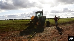 FILE - A farmer walks next to his tractor at a farm near Parkes, 357 kilometers west of Sydney, Australia.