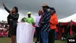 Udaba Esilethuelwe NguAnnastacia Ndlovu