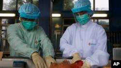 지난 2013년 홍콩 연구원들이 중국에서 들여온 생계 샘플을 이용해 H7N9형 조류독감 바이러스 검사를 하고 있다. (자료사진)